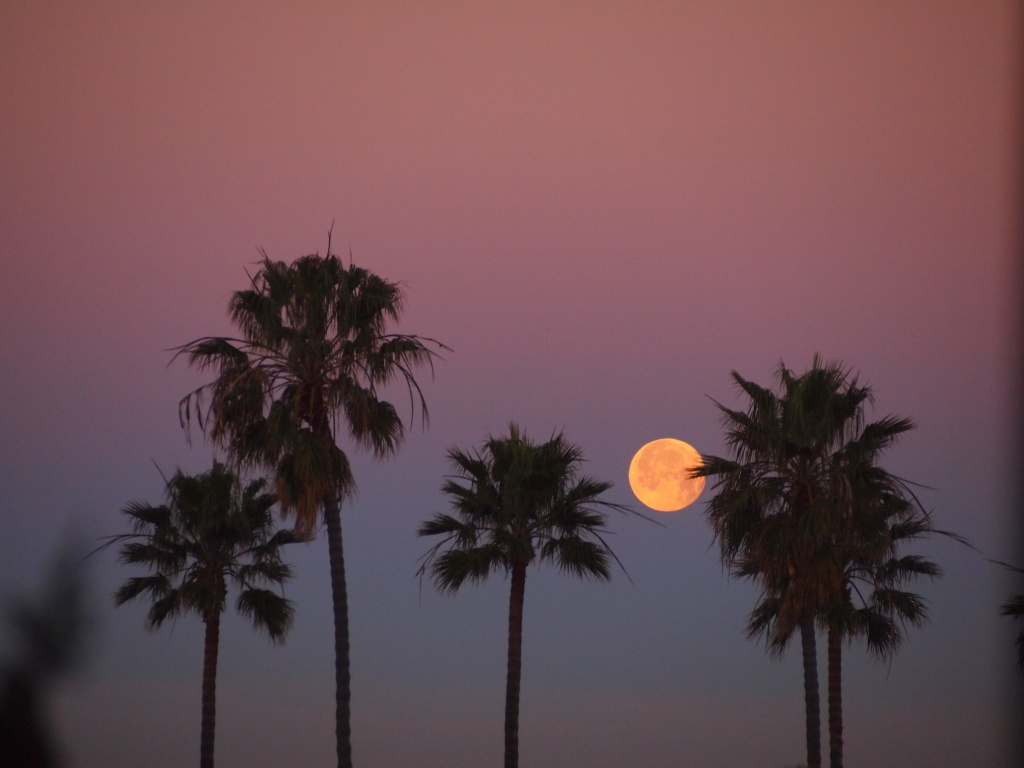 full moon sunrise